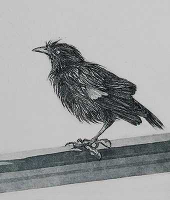Alison Wilson, 'After a shower', etching