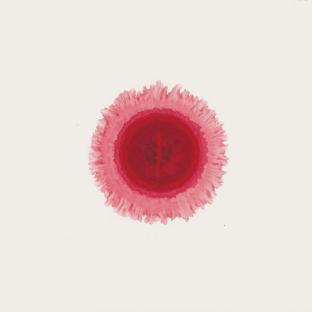 Nan Qi's Dot, 2011 Colour on rice paper 70 x 70 cm