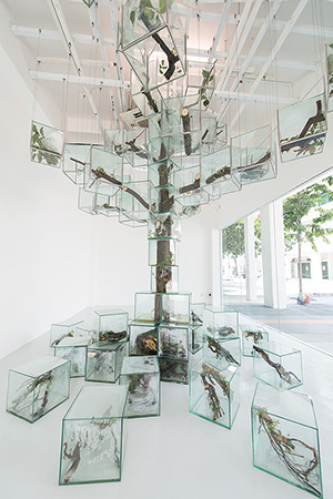 Takashi Kuribayashi, Trees, 2015 Mixed media installation, Photo credit: SAM