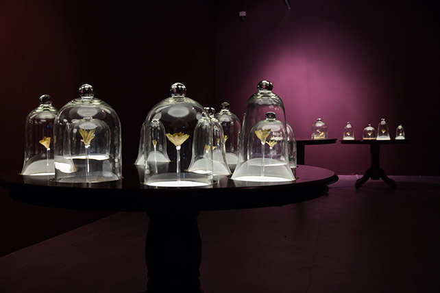 Ezzam Rahman, Here's who I am, I am what you see, 2015, Artist's skin, nails and adhesive, second-hand furniture and glass bell jars, Dimensions variable Singapore Art Museum commission, Collection of the Artist