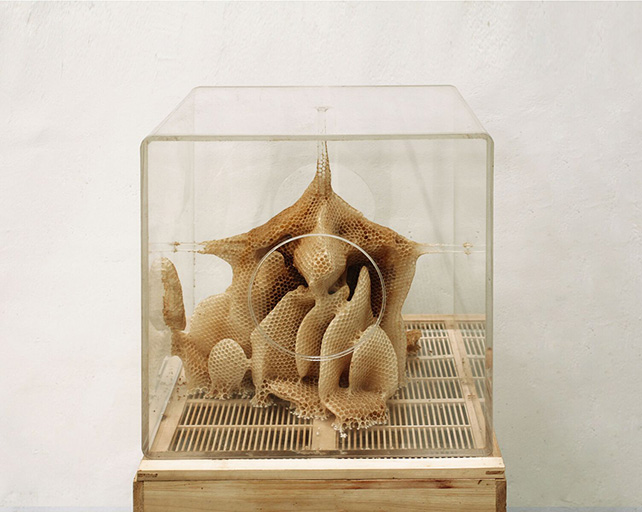 Ren Ri (b.1984), Yuansu Series II#6-7,2013-14,presented by Pearl Lam Galleries
