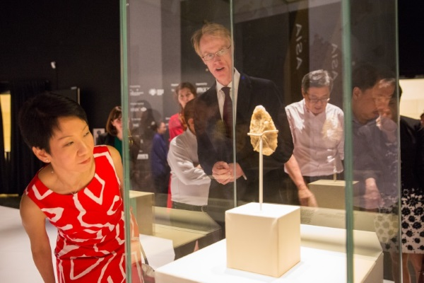 Minister Fu looks at the stone handaxe that is about 800,000 years old. It is the oldest artefact presented in the exhibition.