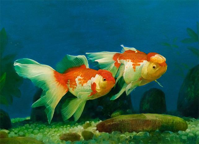 Goldfish by Chen Lian Jun