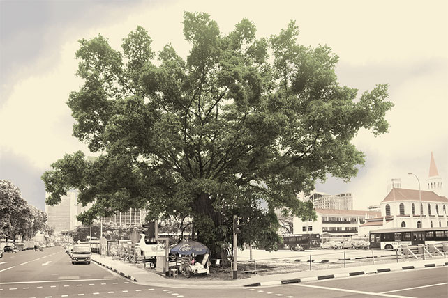Singapore, Very Old Tree - Bodi Tree, Sungei Road, 2015 by Robert Zhao. Collection of the National Museum of Singapore